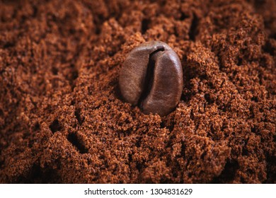 Whole Coffee bean in pile of ground coffee powder.