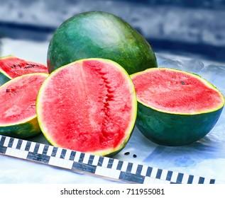 Dark Green Watermelon Images, Stock Photos & Vectors