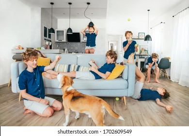 Whole day in one photo: young teen boy spending quarantine lockdown time at home.He playing dog, reading books, boring a lot, learn a juggling, fooling. World coronavirus pandemic or stay home concept