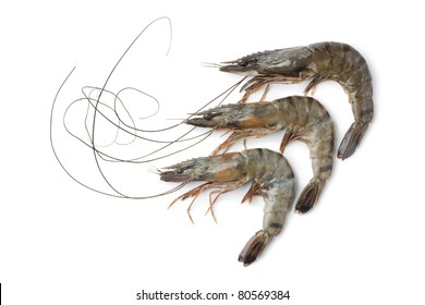 Whole fresh black tiger shrimps on white background
