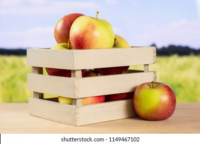Lot of whole fresh red apple james grieve variety with wooden crate with green wheat field in background