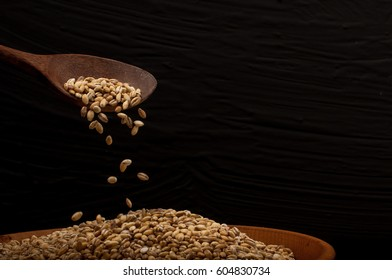 Whole grain of pearl barley or wheat spill on right black background. Agriculture food raw seed. Closeup macro photo