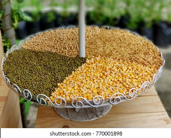 Whole grains,green beans, corns are a source of carbohydrates, multiple nutrients and dietary fiber. Cereals proteins have low quality, due to deficiencies in essential amino acids, mainly lysine.