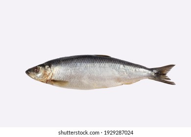 the whole herring lies on a white background