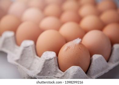 Whole nutural chicken eggs in a carton box.