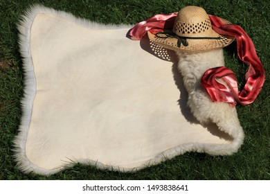 Whole sheepskin is lay out (unfold) and has copy space. Genuine leather has upper side with beige texture (pattern), lower white wool (fleece). Straw hat and red silk scarf decorate animal sheep skin.