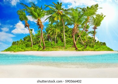Whole tropical island within atoll in Indian Ocean. Uninhabited and wild subtropical isle with palm trees. Blank  sand on a tropical island.