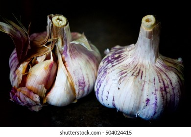Whole white garlic in the black background