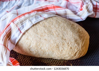 Wholemeal bread dough proofing under a kitchen towel.