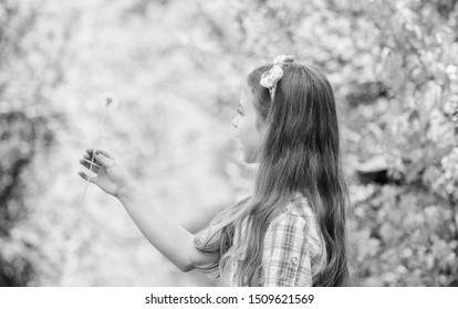 Why people wish on dandelions. Celebrating summer. Dandelion full symbolism. Folklore beliefs about dandelion. Having fun. Girl rustic style making wish and blowing dandelion nature background.