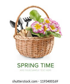 Wicker basket with flowers and gardening tools on white background