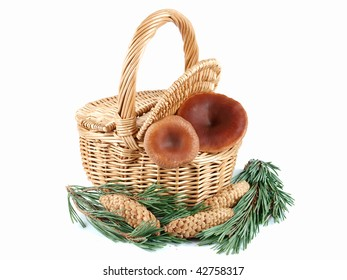Wicker basket with mushrooms inside and pine cones around isolated white