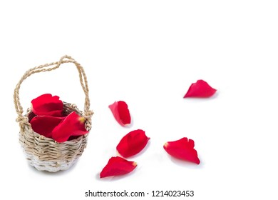 Wicker Basket of Red Petals Rose, with wome on the ground on White Background, Valentine's Day Love Romance Wedding Feast Concept of Love Symbol of Luxury Tenderness
