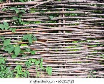 Wicker fence with vegetation on the left side