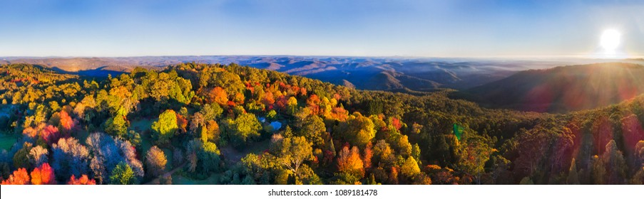 Wide aerial panorama of Mount Wilson town in Blue mountains during hights of autumn season during bright colourful tree leaves colours.