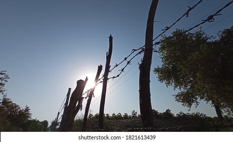 wide angel of barbwire line with sun and nature background