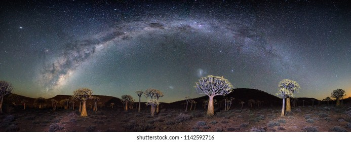 Wide angle astro photography photo with the blazing milky way over the Quiver tree forest in Nieuwoudtville in the Northern Cape of South Africa