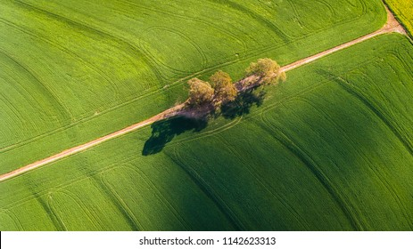 Wide angle drone image of bright green wheat fields in the Swartland region of the western cape of south africa.
