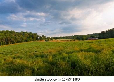 Wide Angle of an Open Meadow with Rolling Hills