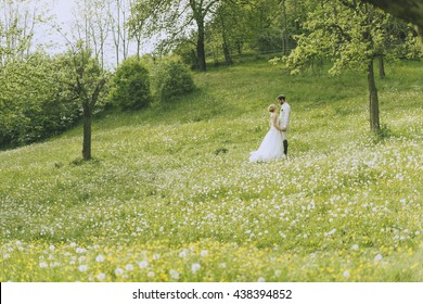 Wide angle shot of a bridal couple's standing on a white flowering meadow between white flowering appletrees