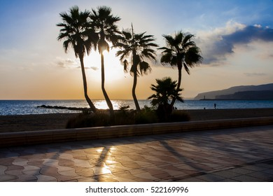 wide angle shot of palm trees and sunset at the beach of Almeria, south of Spain, Andalusia