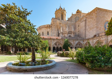 A wide angle view of the gardens and cloisters of Tarragona Cathedral, in Tarragona city, Spain. Taken on a warm clear day.