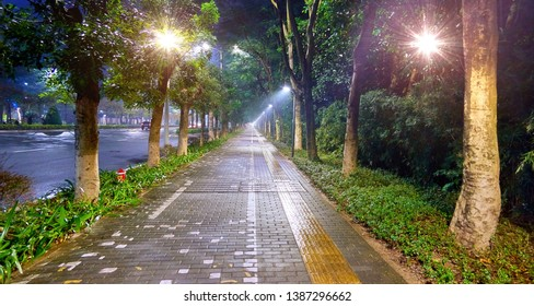 Wide angle view of illuminated green tree alley and pedestrian brick road in Chinese Shenzhen tonight