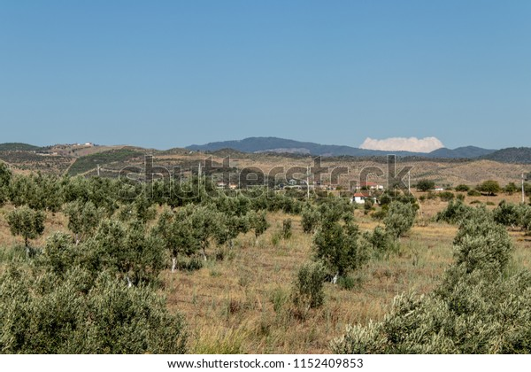 a wide angled summer landscape shoot from a plain. photo has taken from countryside of izmir/turkey.