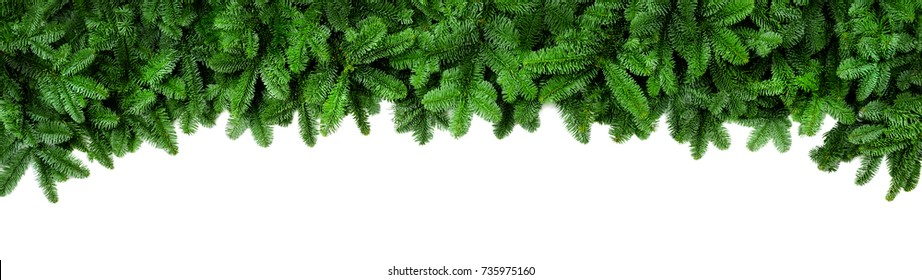 Wide Christmas border arranged with fresh fir branches isolated on white shaped as an arch, banner format