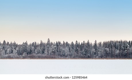 Wide empty panoramic background landscape with coastal forest on frozen lake in winter season, Karelia, Russia