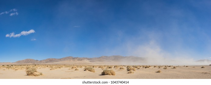 Wide expanse of brush growing in the open sand of the Mojave Desert in southern California.