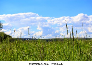 Wide field with blue sky