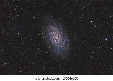 Wide Field View of the Triangulum Galaxy