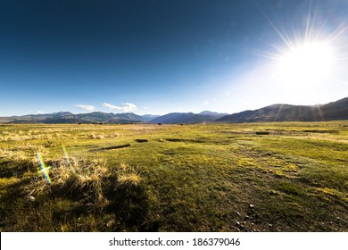 Wide grass field on sunny day