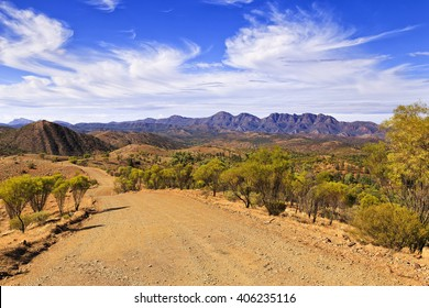 A wide gravel unsealed road to Wilpena Pounds in Flinders Ranges national park through eucalyptus trees and red soil outback.