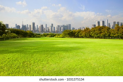 wide green grass ground of public park against high building in city