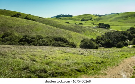 Wide Green hillsides of Sonoma County, CA