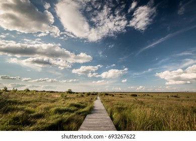 Wide landscape with path