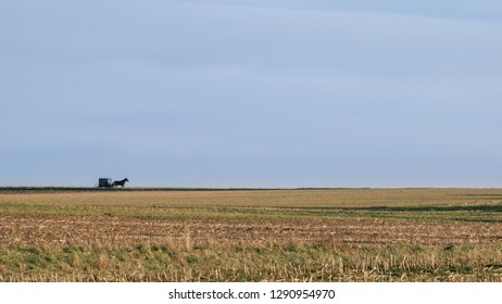 Wide open landscape, fields and horizon, with a horse drawn Amish buggy, Lancaster County, PA