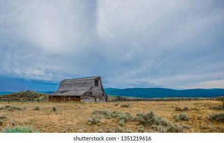 wide open vast montana landscape in summer