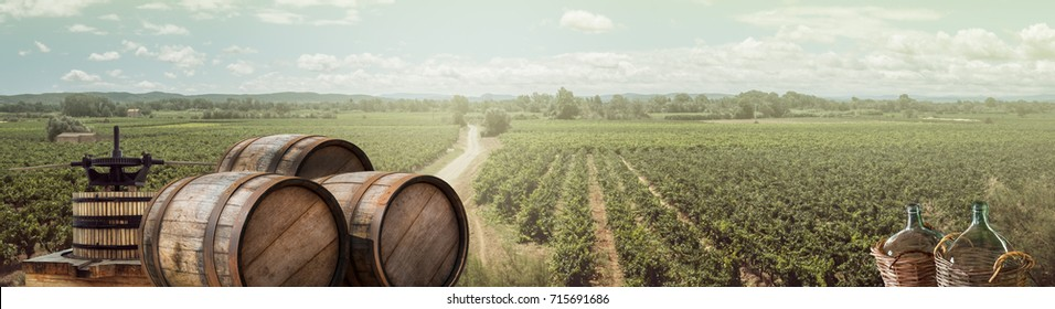 Wide panorama of agricultural landscape - vineyards, wine bottles and old wooden barrels. Countryside of France for your background of Festival of young wine Beaujolais.
