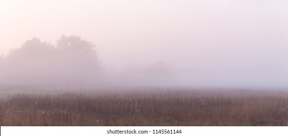 Wide panorama of beautiful foggy meadow. Dense fog over dry grass meadow and trees silhouettes at early autumn morning.