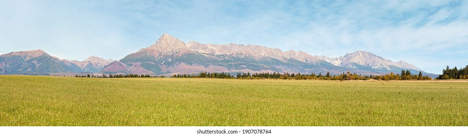Wide panorama of green meadow with small forest and mount Krivan peak - Slovak symbol - in distance, blue sky above