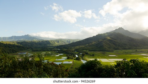Wide panorama of Hanalei Valley on island of Kauai in very high resolution