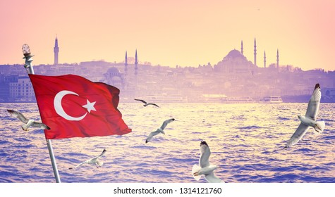 Wide panorama of Istanbul with silhouettes of mosques and minarets at skyline. Panoramic view on ancient town on sunset - tourist cruise ships with turkish flag and flying seagulls over the sea.