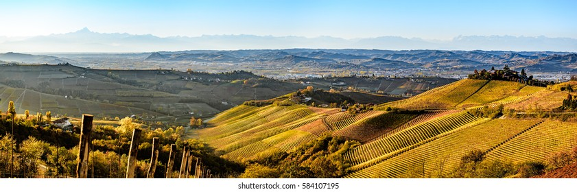 wide panorama of Langhe region in northern italy, on autumn,unesco heritage
