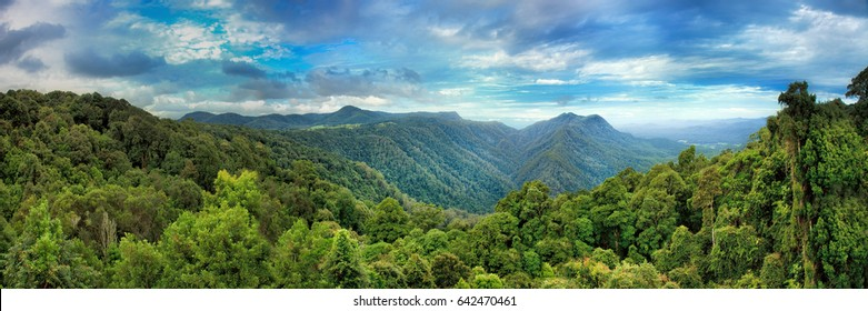 Wide panorama from tourist lookout in Dorrigo National park towards mountain ranges and hills covered by evergreen cold rain-forests - a unique remainder of ancient Gondwana continent in Australia.