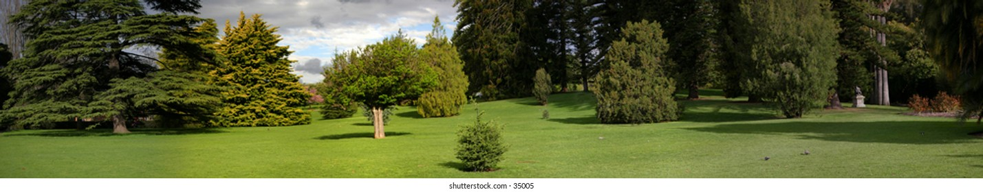 A wide, Panoramic garden shot