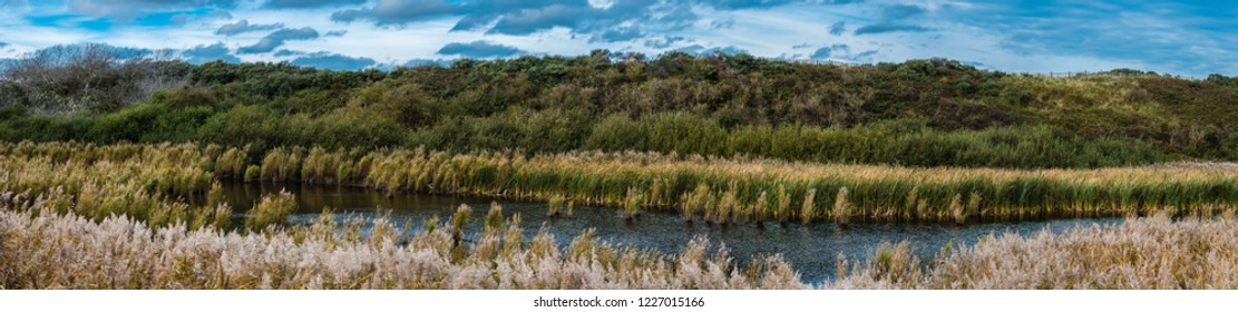 Wide panoramic view over the Flemish nature reserve Fonteintjes in Blankenberge, Belgium with a natural water pond  and sea grasses growing on sand dunes