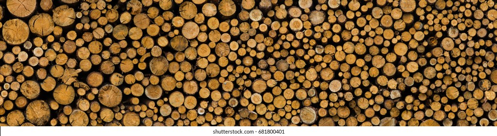 A wide pattern formed by round cuttings of tree trunks, stacked one by one